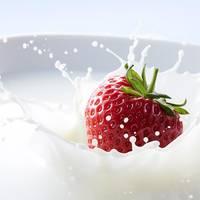 74_Splash_Milch_Erdbeere