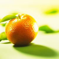 10_Orange