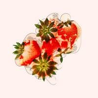 45_Erdbeeren_Flatfruit